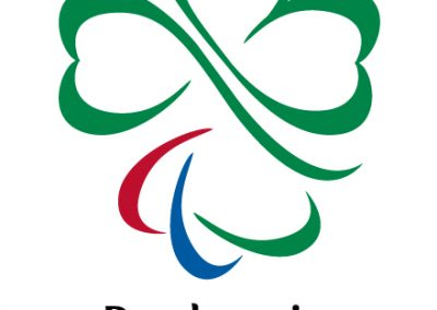 ParalympicsIrelandPrimaryMedium